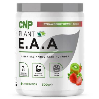 Plant E.A.A 300g strawberry kiwi